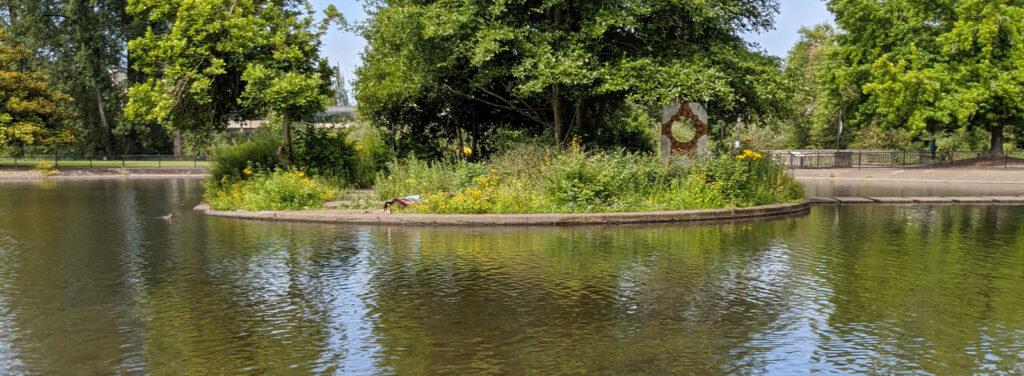 Alton Ponds